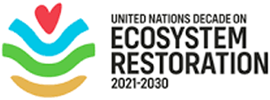 https://earthbeat.youth4planet.com/wp-content/uploads/2021/08/ECOSYS.png